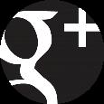 icon_google_small
