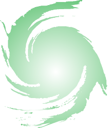 VortisiezeLogo4 Swirl